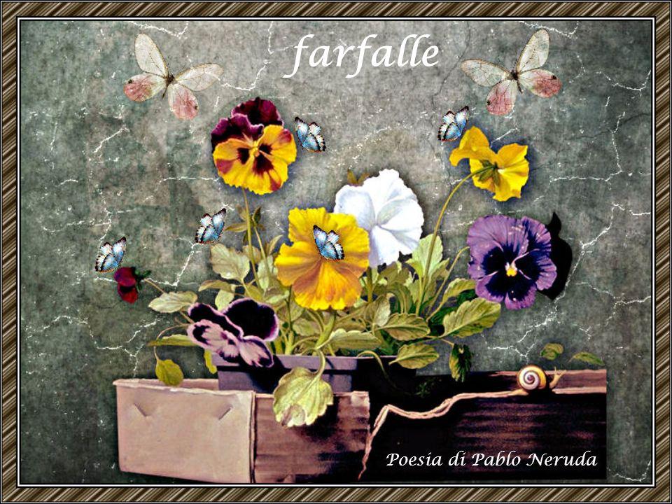 farfalle Poesia di Pablo Neruda