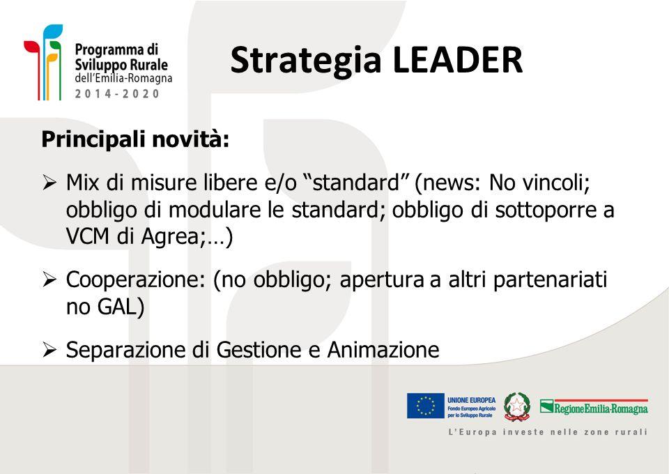 Strategia LEADER Principali novità: