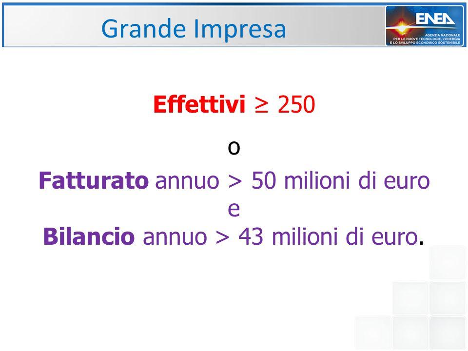 Grande Impresa Effettivi ≥ 250 o
