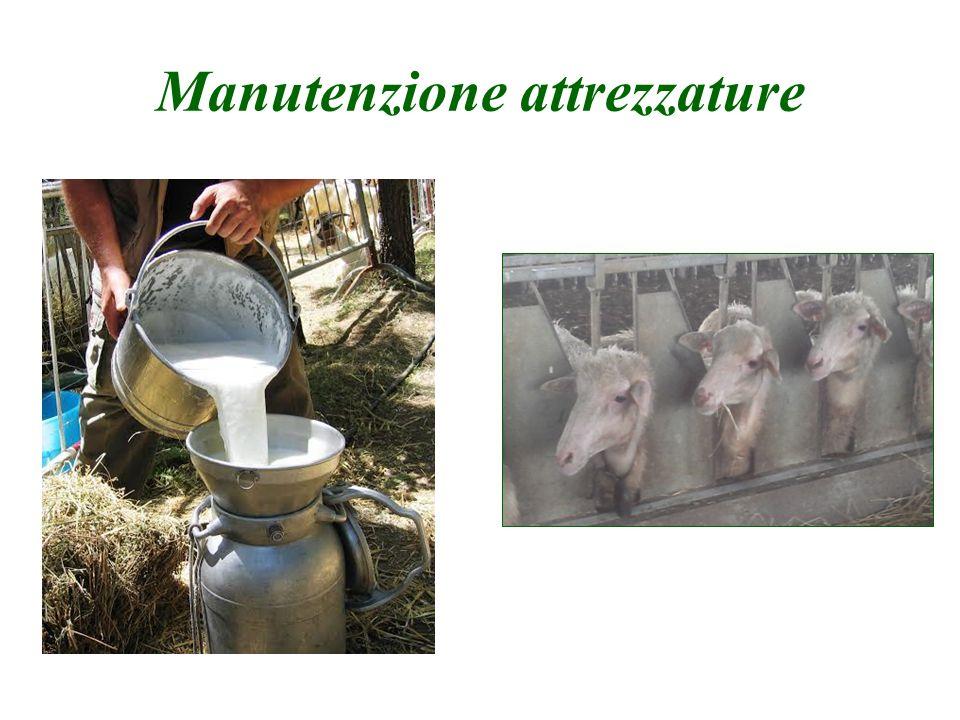 Manutenzione attrezzature