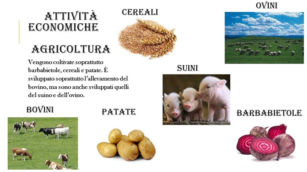 Attività economiche agricoltura