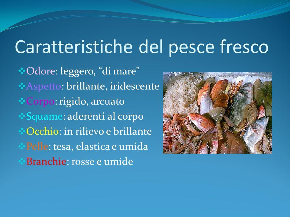 Caratteristiche del pesce fresco