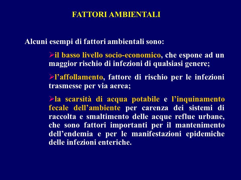 FATTORI AMBIENTALI Alcuni esempi di fattori ambientali sono: