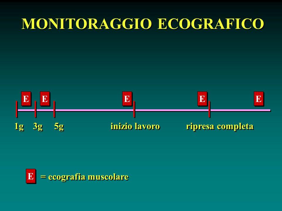 MONITORAGGIO ECOGRAFICO