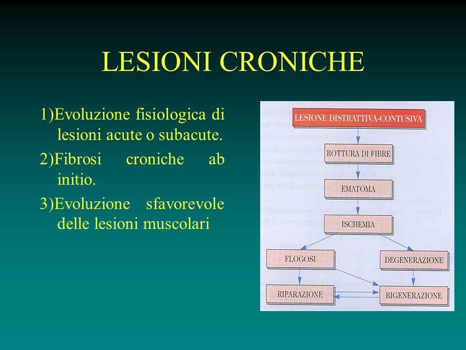 LESIONI CRONICHE 1)Evoluzione fisiologica di lesioni acute o subacute.