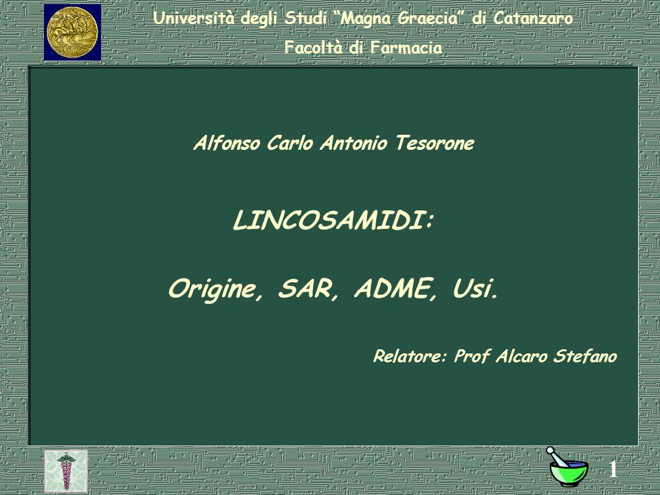 Università degli Studi Magna Graecia di Catanzaro