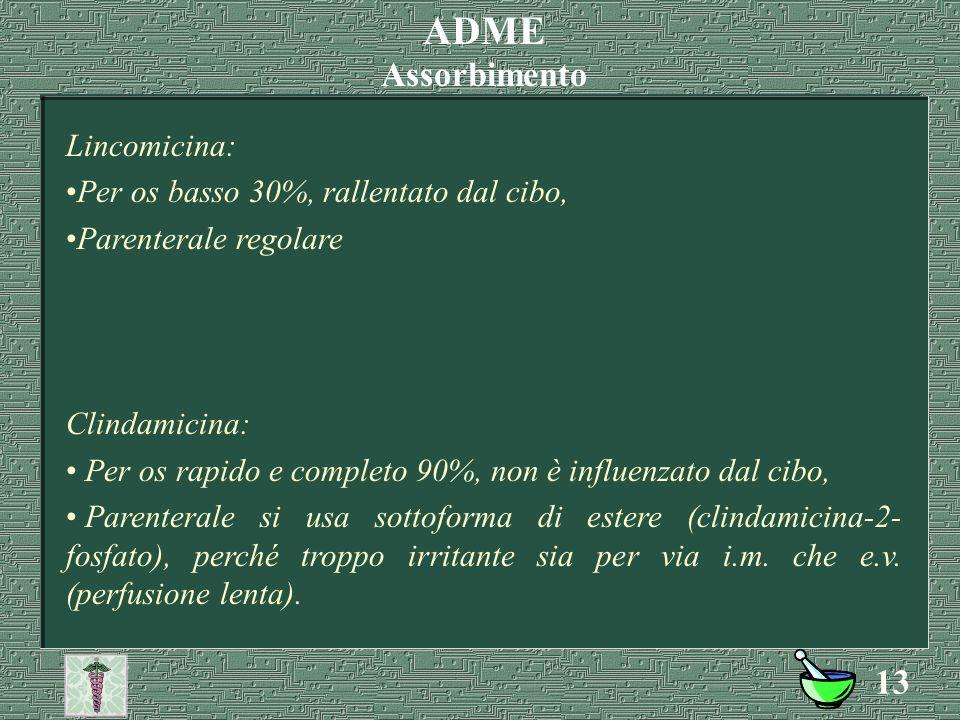 ADME Assorbimento Lincomicina: Per os basso 30%, rallentato dal cibo,