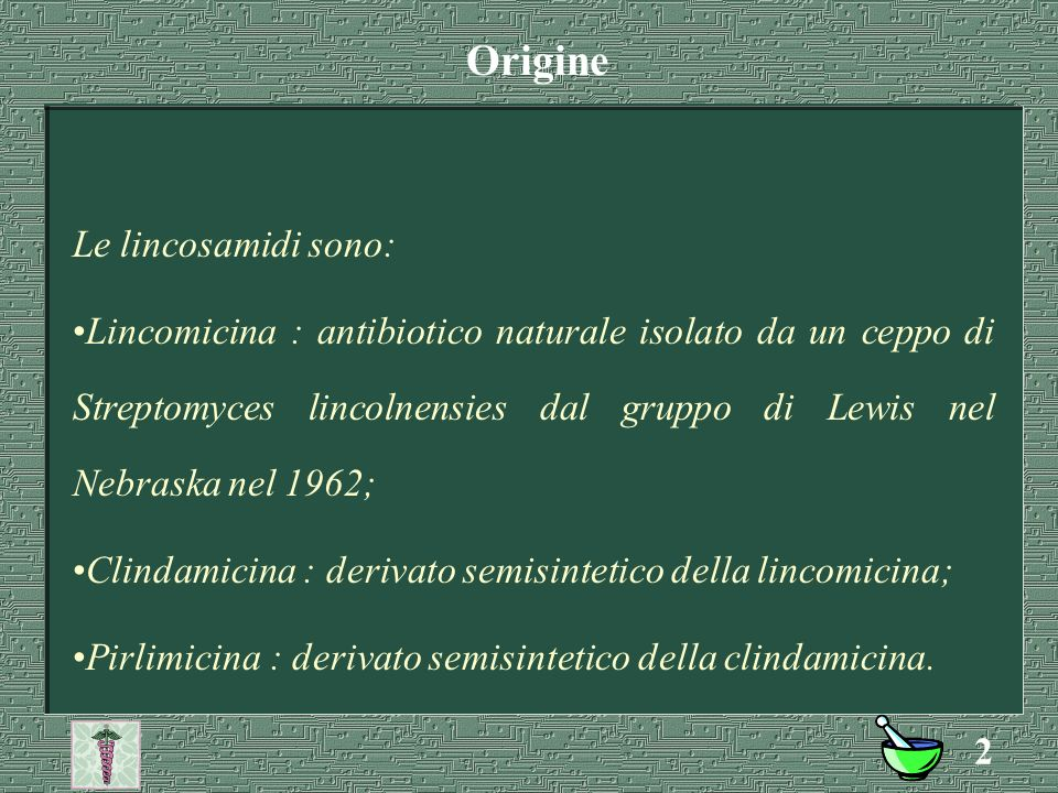 Origine Le lincosamidi sono: