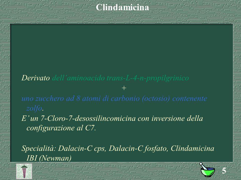 Clindamicina Derivato dell'aminoacido trans-L-4-n-propilgrinico +