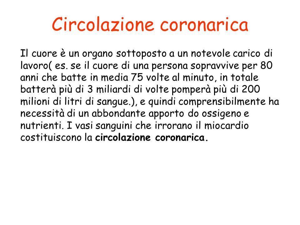 Circolazione coronarica