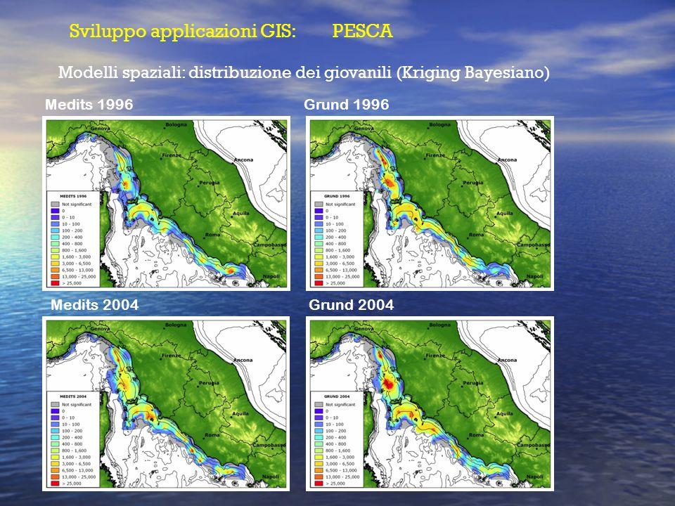 Sviluppo applicazioni GIS: PESCA