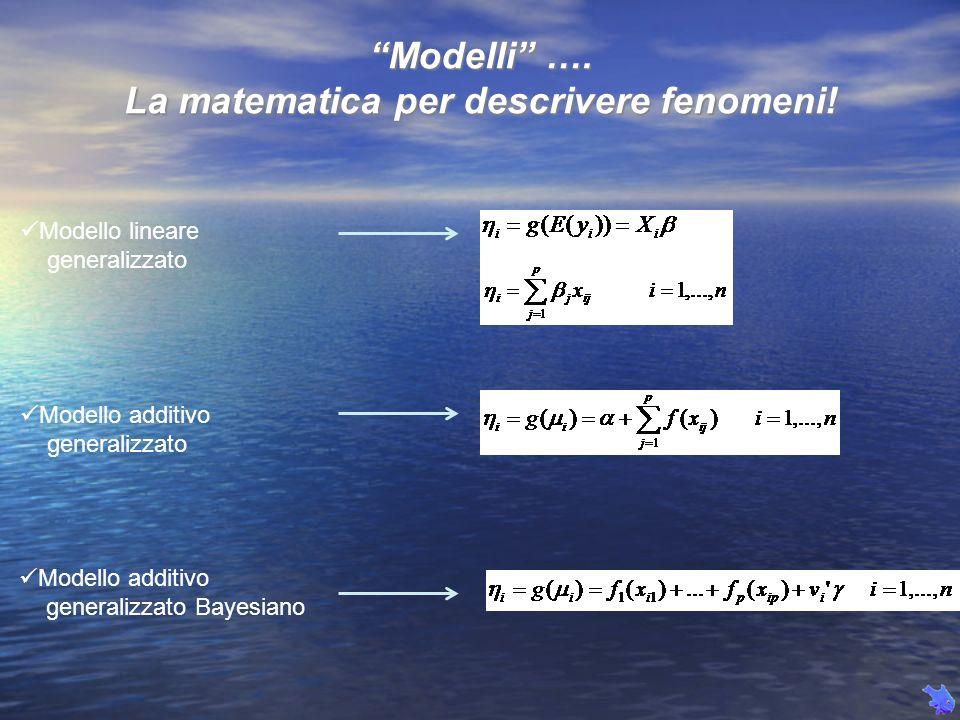 La matematica per descrivere fenomeni!