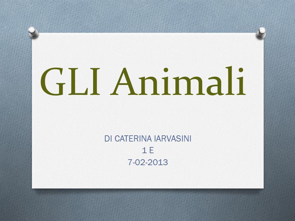 DI CATERINA IARVASINI 1 E 7-02-2013