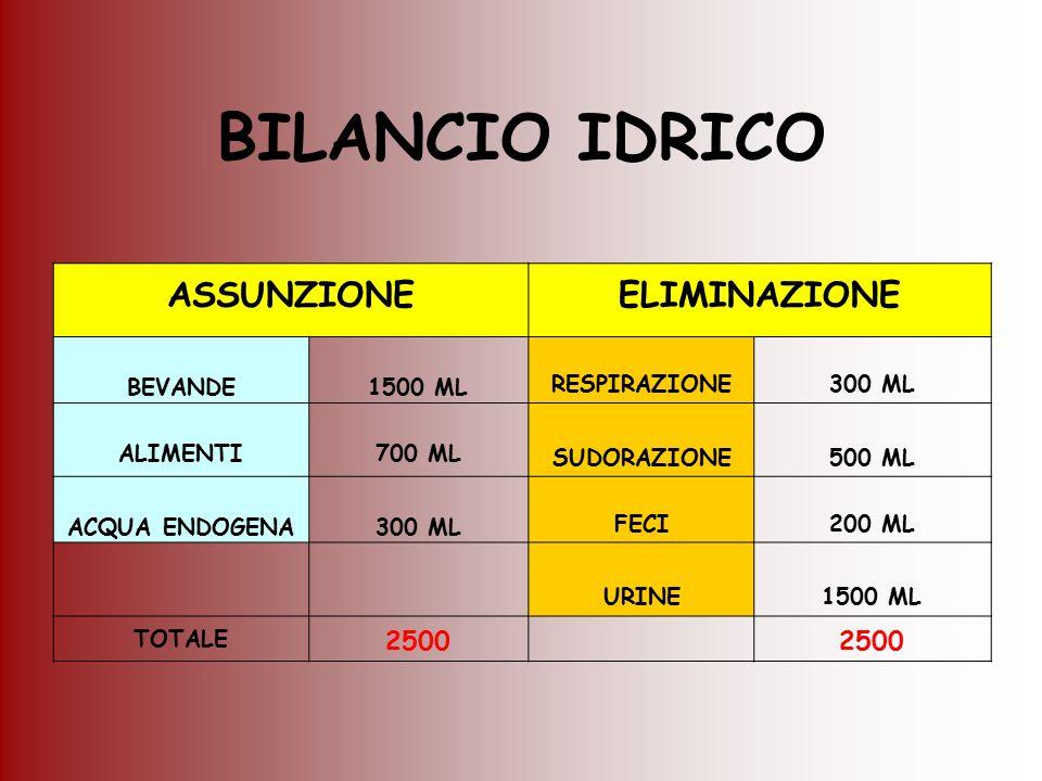 BILANCIO IDRICO ASSUNZIONE ELIMINAZIONE 2500 BEVANDE 1500 ML