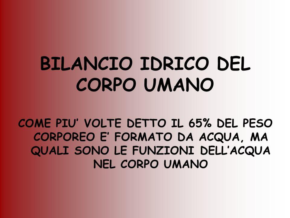 BILANCIO IDRICO DEL CORPO UMANO