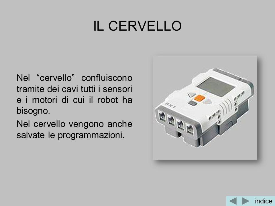 IL CERVELLO Nel cervello confluiscono tramite dei cavi tutti i sensori e i motori di cui il robot ha bisogno.