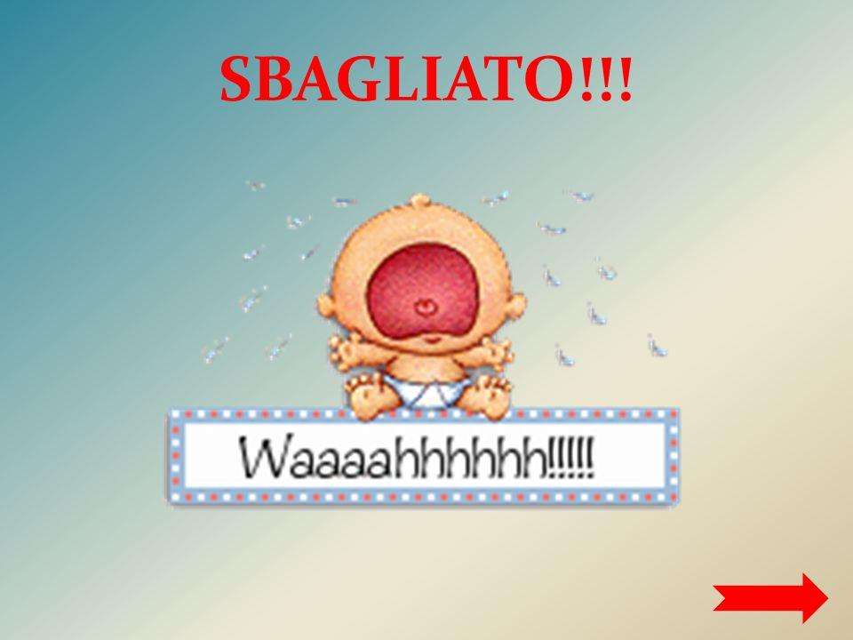 SBAGLIATO!!!