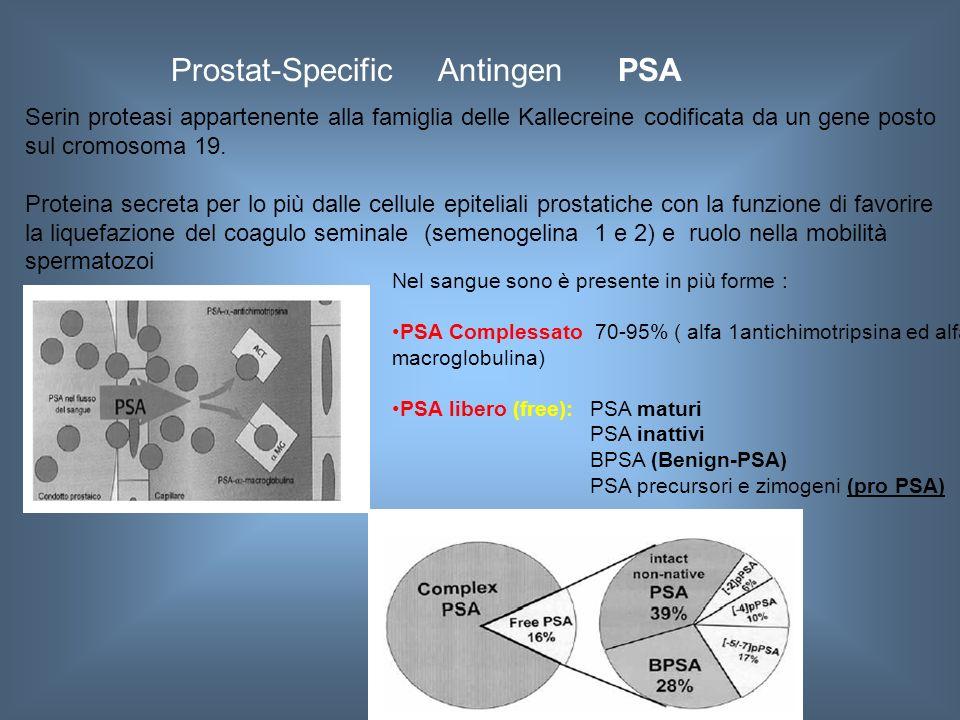 Prostat-Specific Antingen PSA