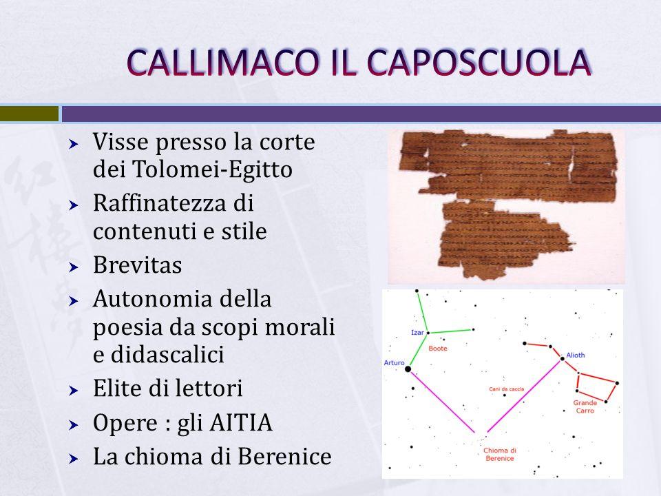 CALLIMACO IL CAPOSCUOLA