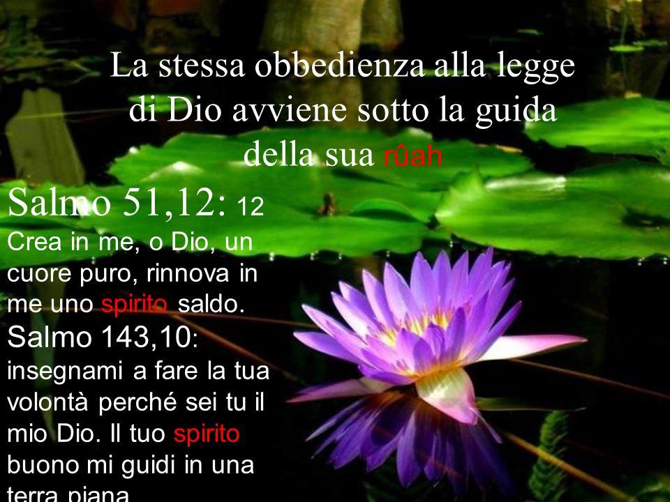 La stessa obbedienza alla legge di Dio avviene sotto la guida della sua rûah