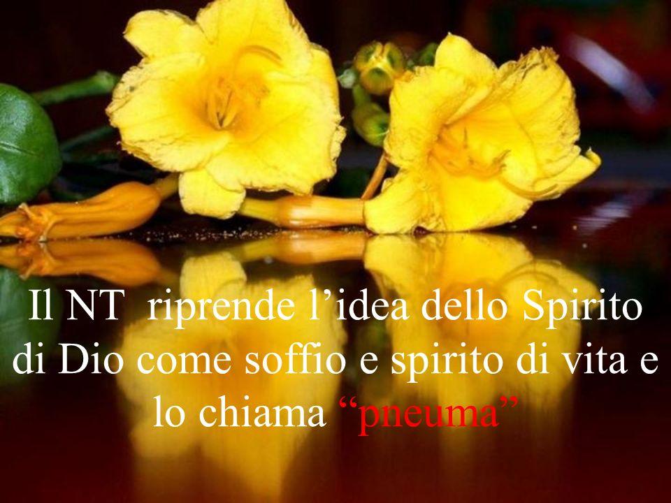 Il NT riprende l'idea dello Spirito di Dio come soffio e spirito di vita e lo chiama pneuma