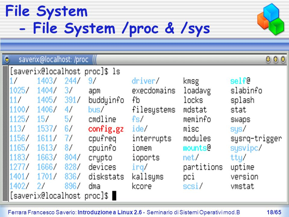 File System - File System /proc & /sys