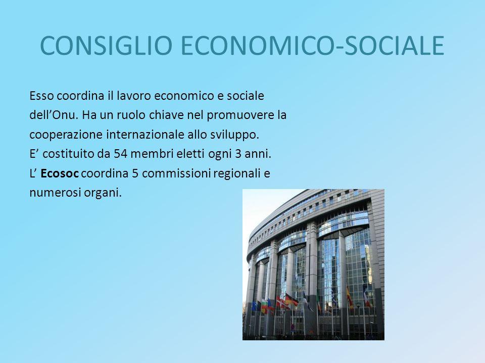 CONSIGLIO ECONOMICO-SOCIALE