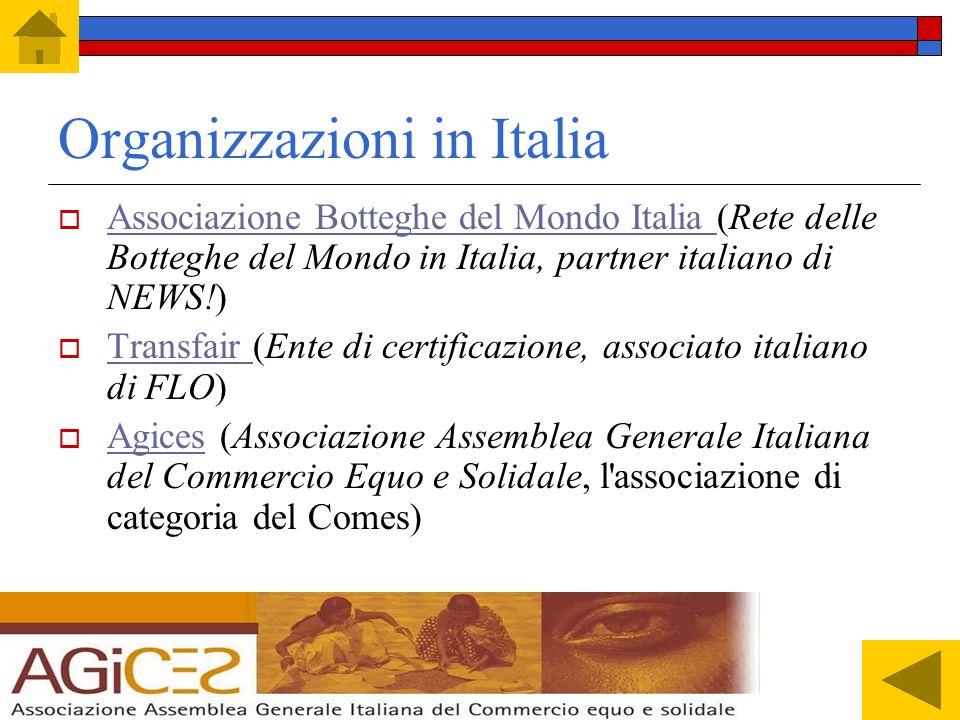 Organizzazioni in Italia
