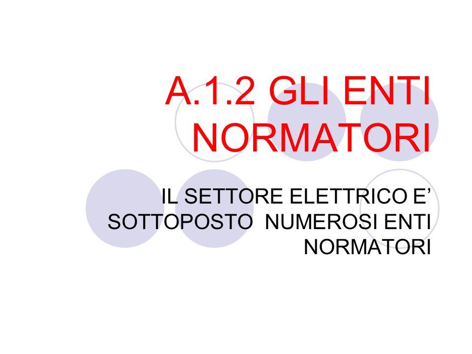 IL SETTORE ELETTRICO E' SOTTOPOSTO NUMEROSI ENTI NORMATORI
