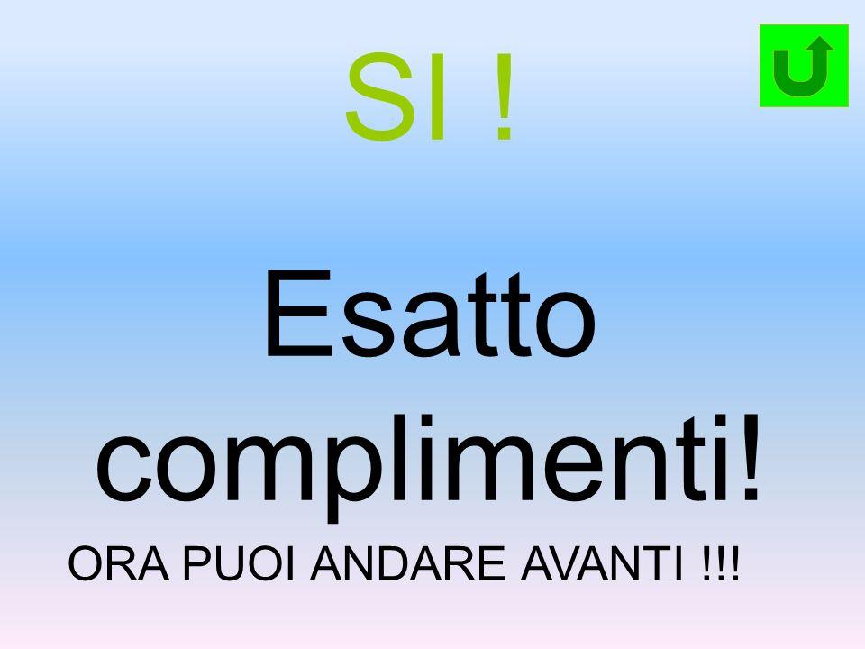 SI ! Esatto complimenti! ORA PUOI ANDARE AVANTI !!!