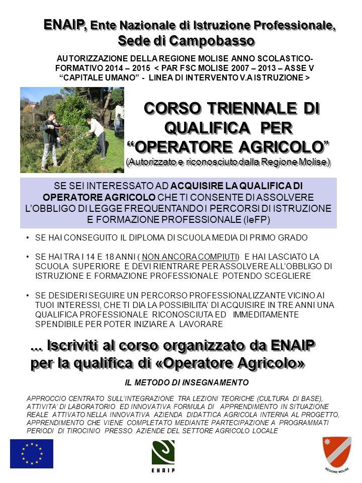 ENAIP, Ente Nazionale di Istruzione Professionale,