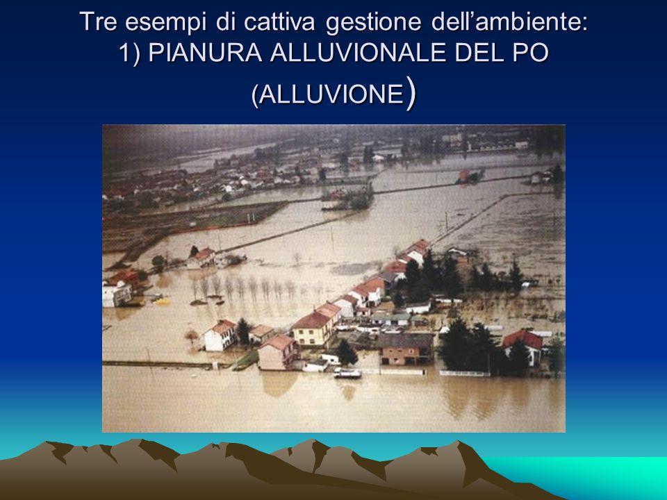 Tre esempi di cattiva gestione dell'ambiente: 1) PIANURA ALLUVIONALE DEL PO (ALLUVIONE)