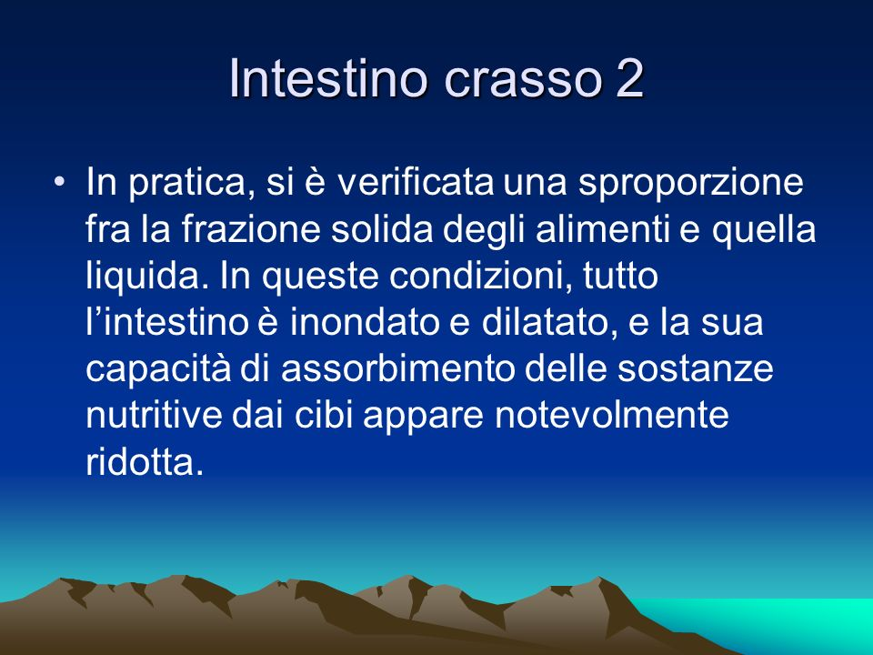 Intestino crasso 2