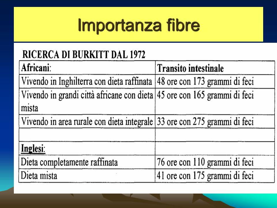 Importanza fibre
