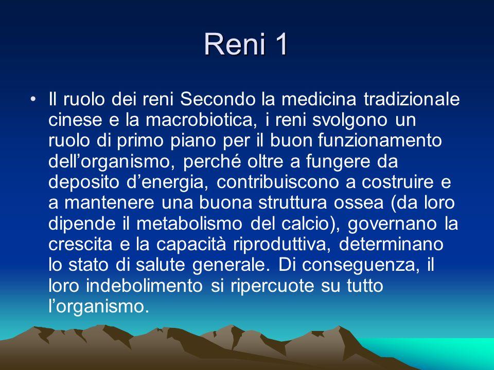 Reni 1