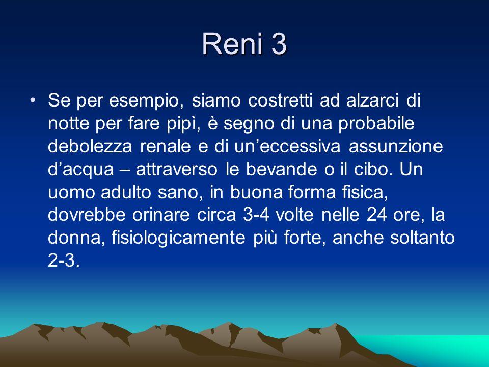 Reni 3