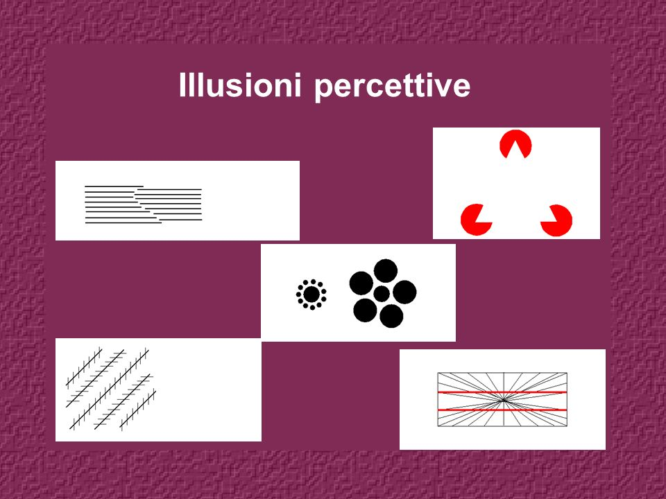 Illusioni percettive