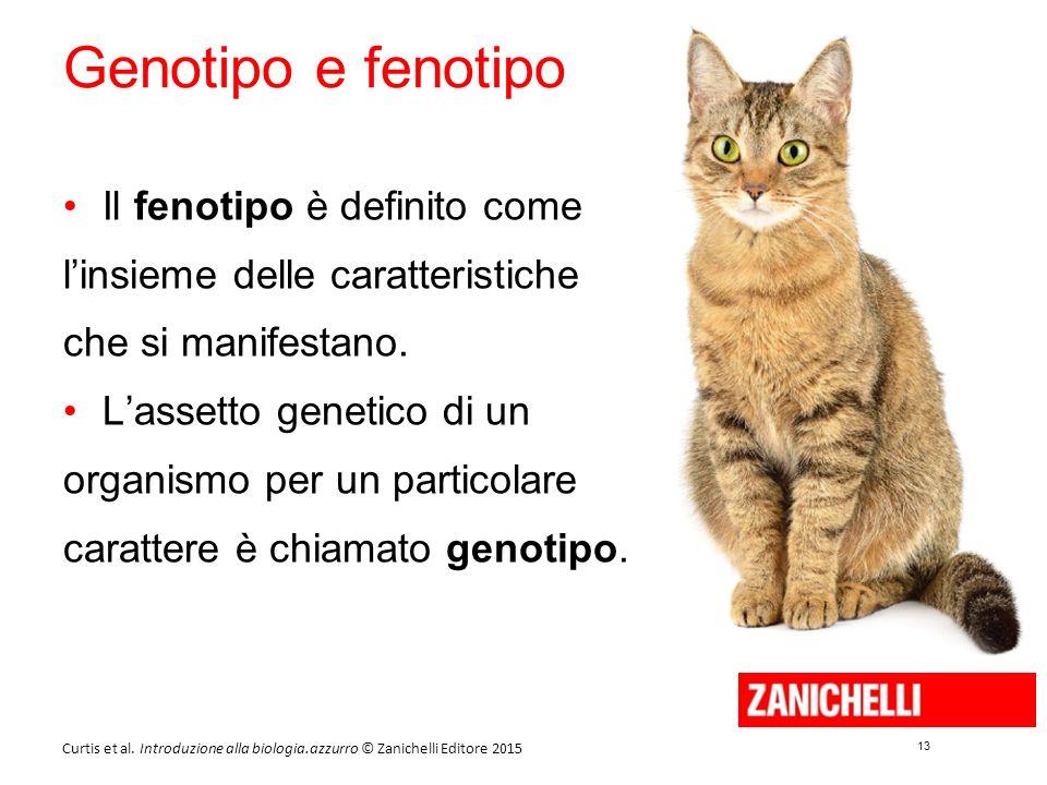 Genotipo e fenotipo Il fenotipo è definito come l'insieme delle caratteristiche che si manifestano.