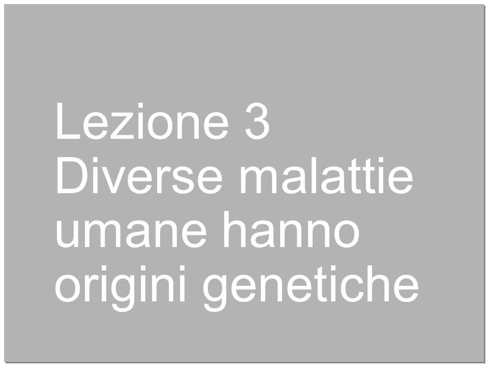 Lezione 3 Diverse malattie umane hanno origini genetiche