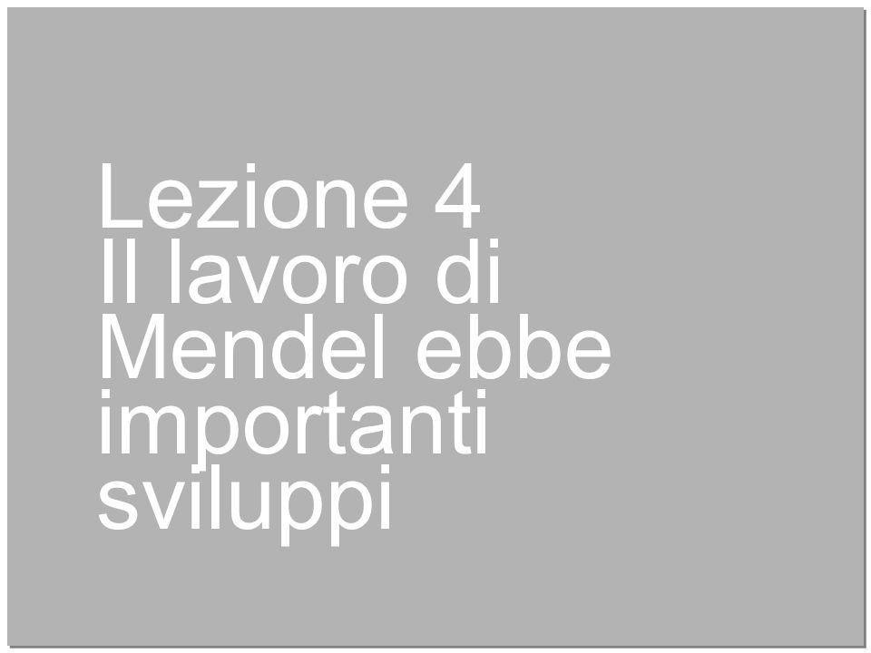 Lezione 4 Il lavoro di Mendel ebbe importanti sviluppi