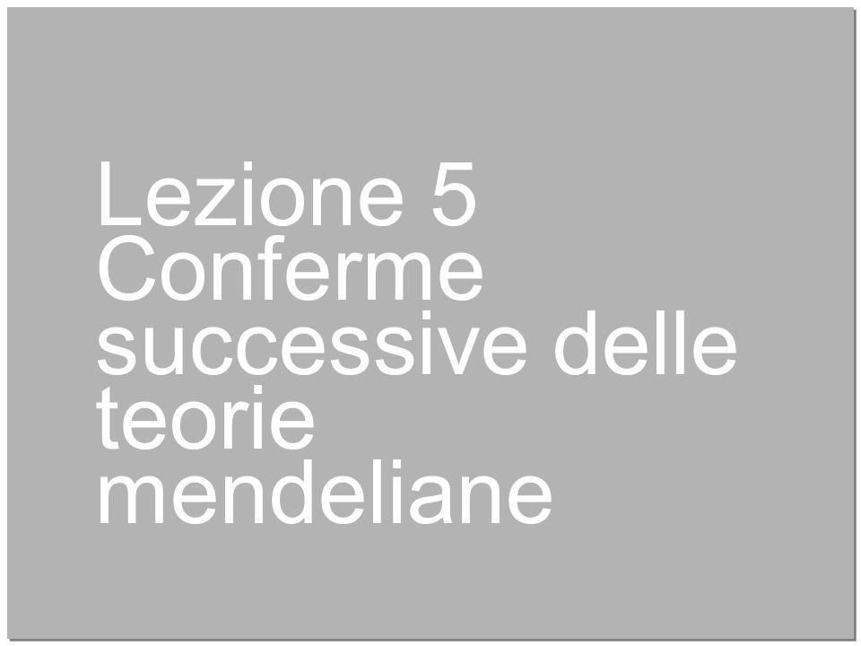Lezione 5 Conferme successive delle teorie mendeliane