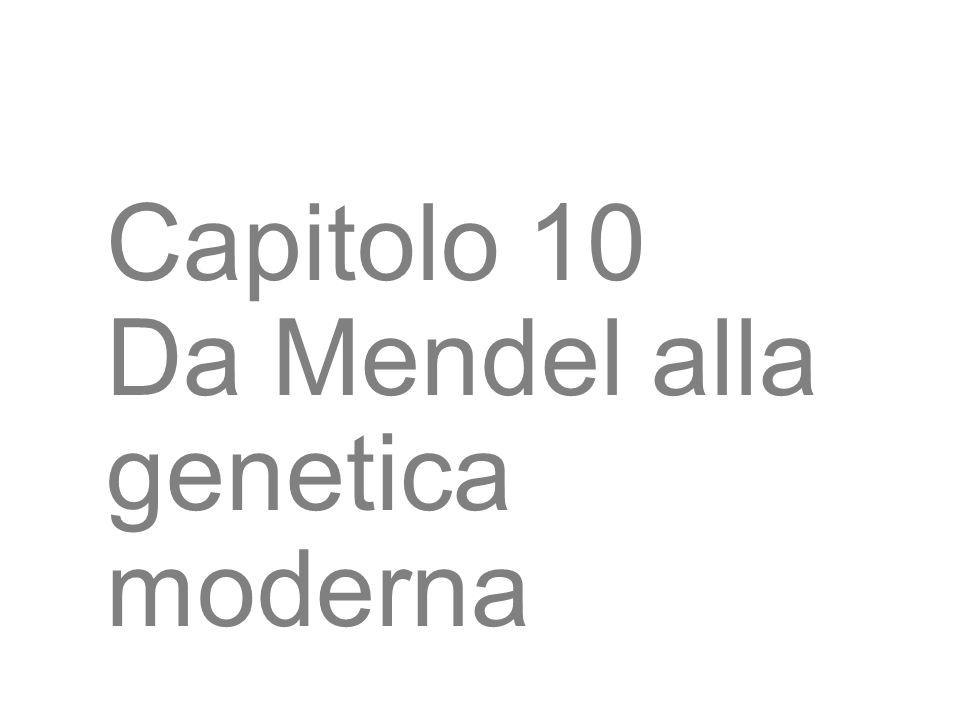 Capitolo 10 Da Mendel alla genetica moderna