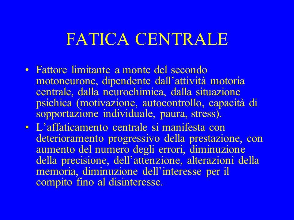 FATICA CENTRALE