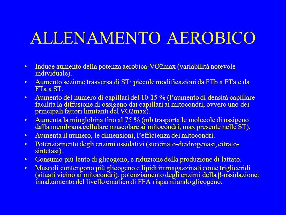 ALLENAMENTO AEROBICO Induce aumento della potenza aerobica-VO2max (variabilità notevole individuale).