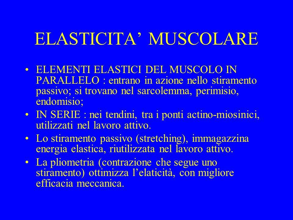 ELASTICITA' MUSCOLARE