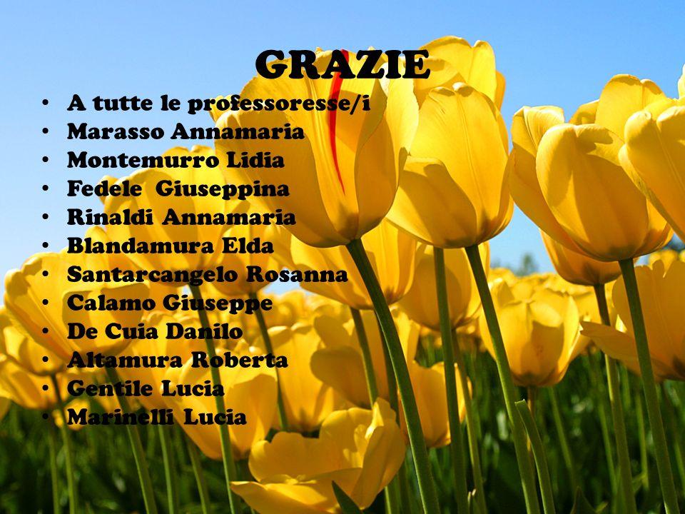 GRAZIE A tutte le professoresse/i Marasso Annamaria Montemurro Lidia