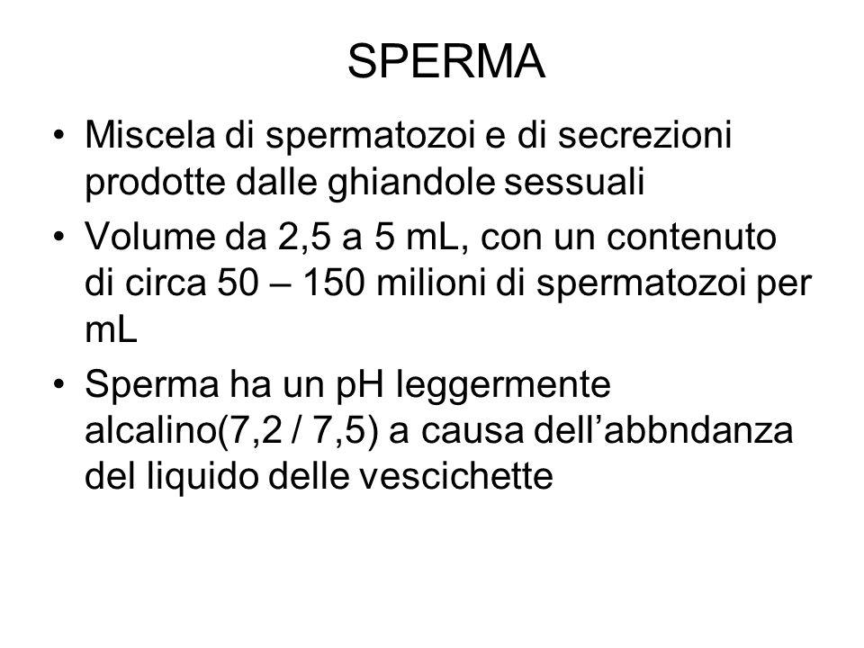 SPERMA Miscela di spermatozoi e di secrezioni prodotte dalle ghiandole sessuali.