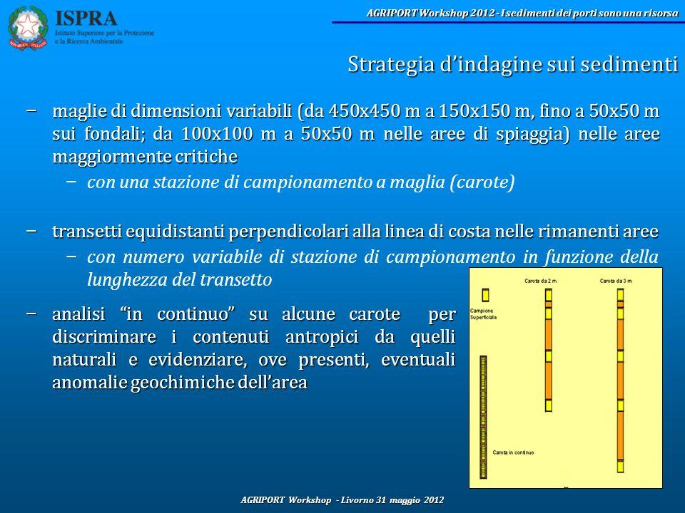 Strategia d'indagine sui sedimenti
