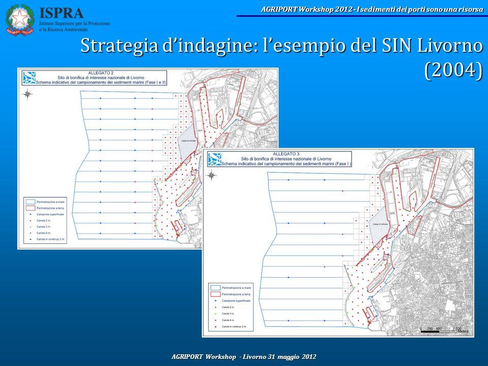 Strategia d'indagine: l'esempio del SIN Livorno (2004)