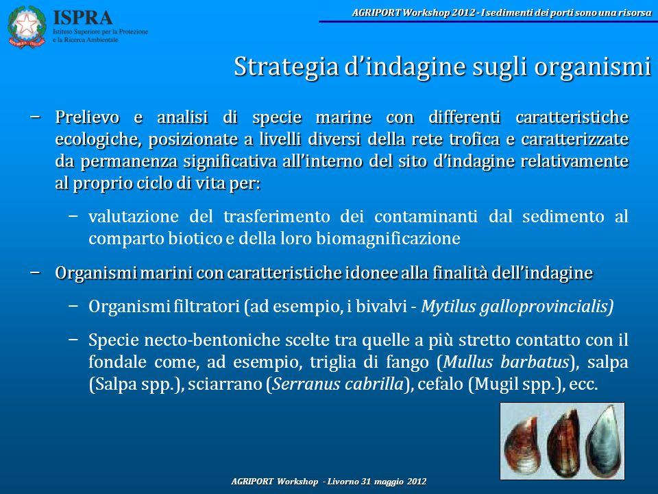 Strategia d'indagine sugli organismi